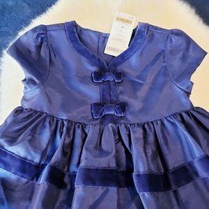 NWT Gymboree 3T Blue Satin Velvet Easter Dress